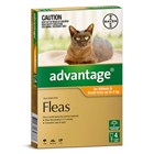 Advantage Flea Treatment for Kittens and Small Cat